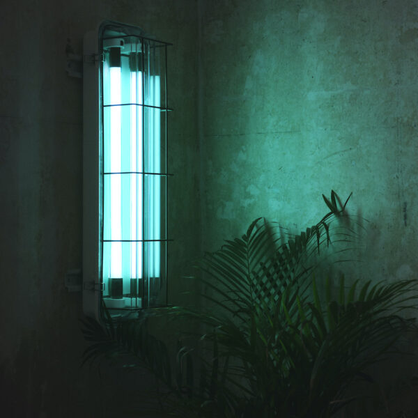 2ft Caged Wall Light